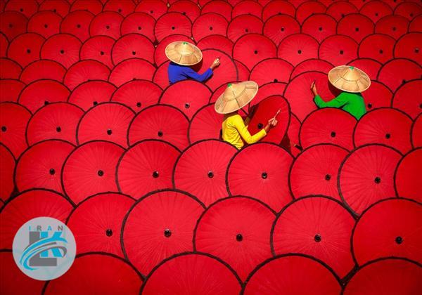 تصاویر منتخب مسابقات عکاسی سونی ۲۰۱۹