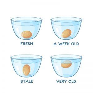 تست سالم بودن تخم مرغ