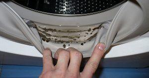 تمیز کردن لاستیک درب ماشین لباسشویی