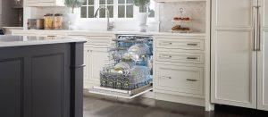 برنامه های شستشو ماشین ظرفشویی اسنوا